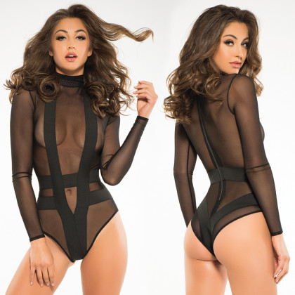 Skye Sheer Bodysuit
